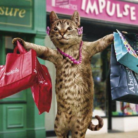 The Shameless Consumerist.