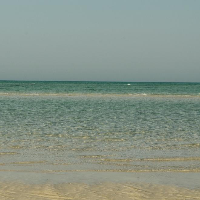 Wakrah Beach! I miss thee, my love!