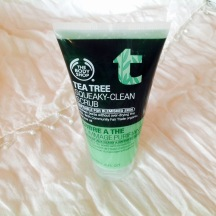"""If you can live with it's """"tea-tree"""" smell (fragrance?), it's actually a really efficient, everyday cleanser. It is called a scrub, but it ain't as """"scrubby"""" as you think it might be, I get away with using it everyday."""